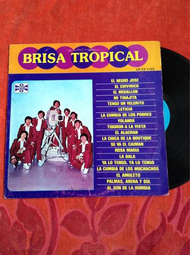 lp brisa tropical