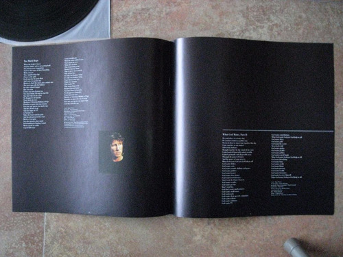 lp roger waters, pink floyd, amused to death