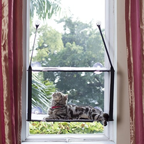 ls 2018 cat perch hamaca ventana gato cama kitty sunny se