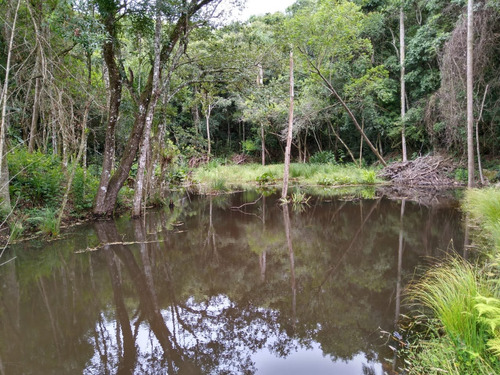 l.s lançamento da semana terrenos de 1000 mts em ibiuna