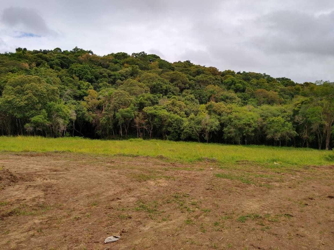 l.s  lindos terrenos de 1000m2 em ibiuna