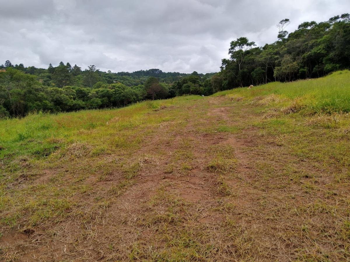 l.s oportunidade  unica terrenos em ibuna