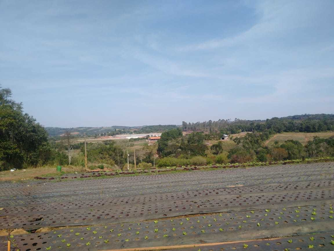 l.s terrenos plainos em promoção com 1000m2