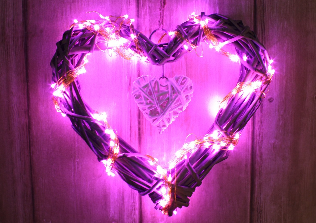d17a2aa8e64 luces led rosa magenta 10 mts navidad navideña casamiento. Cargando zoom.