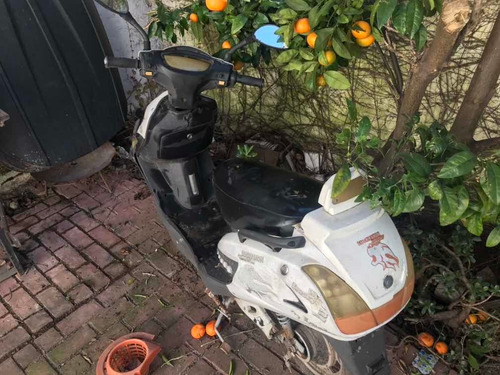 lucky lion scooter