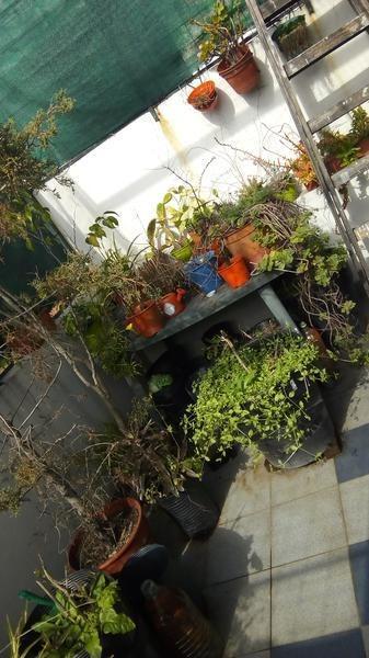 luminoso ph en venta en almagro - 3 amb con terraza exclusiva