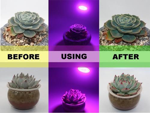 luz led para el crecimiento de las plantas