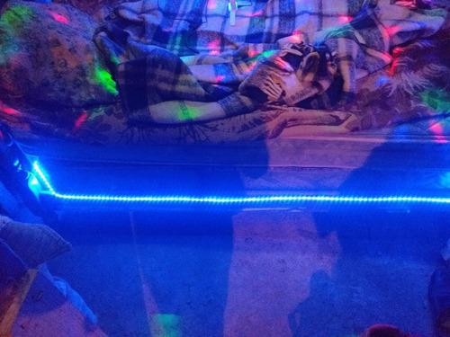 luz led tira 2835 1,2,3 metros $100 pesos metro