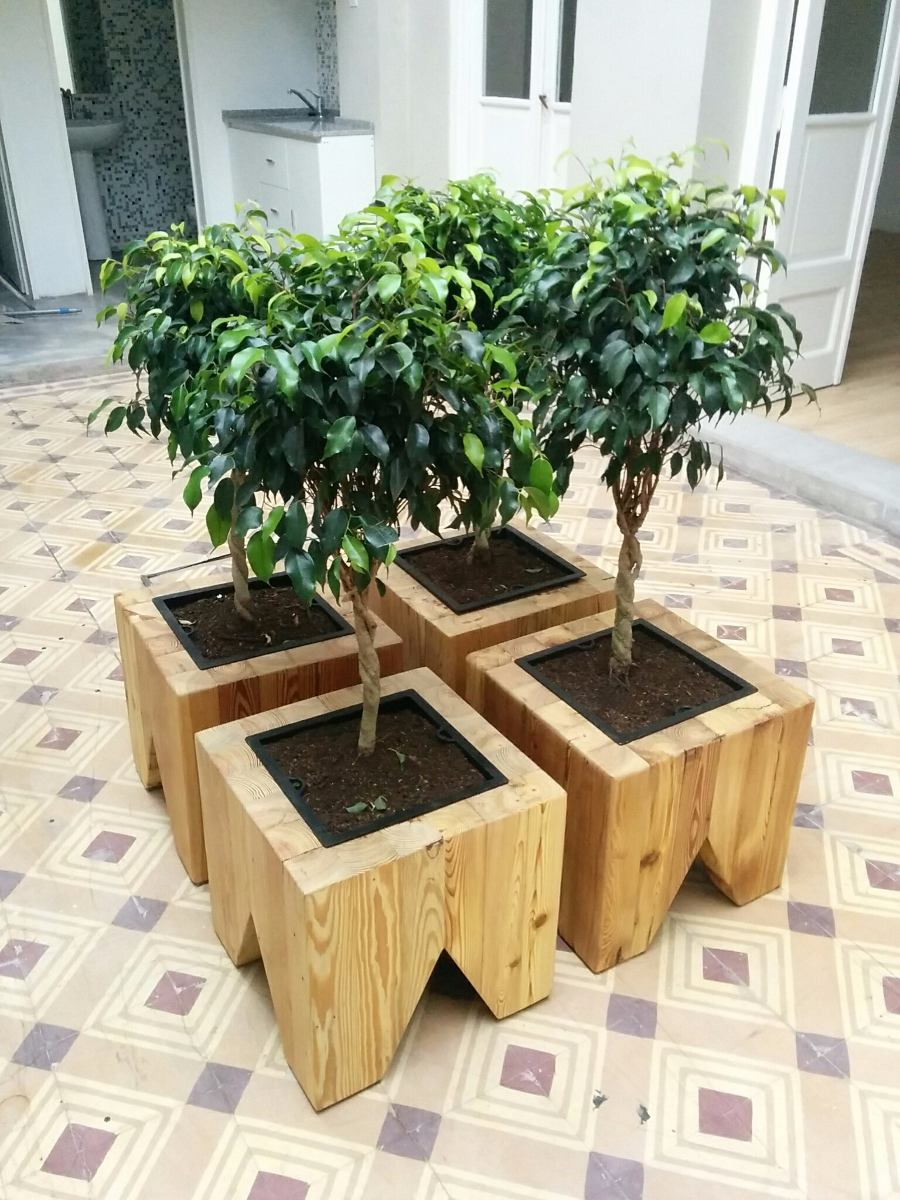 Macetas madera affordable macetas madera cactus souvenirs for Maceteros de madera para interior