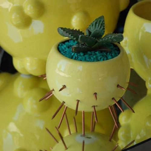 maceta cactus chica amarilla - belgrano