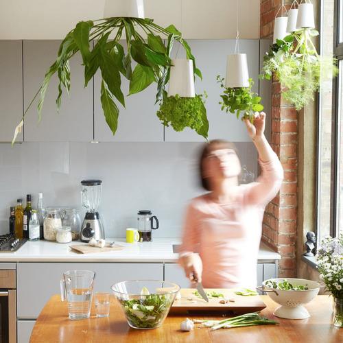 maceta colgante para planta natural con gancho blanco h4070