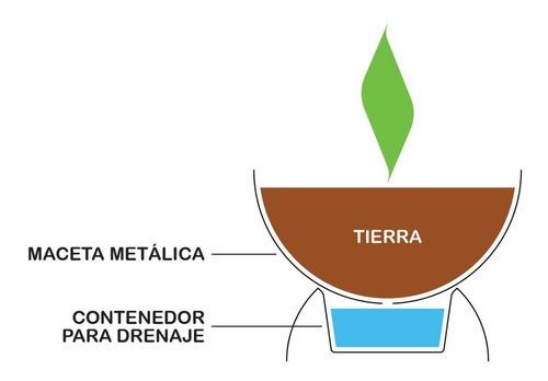 maceta con base para drenaje