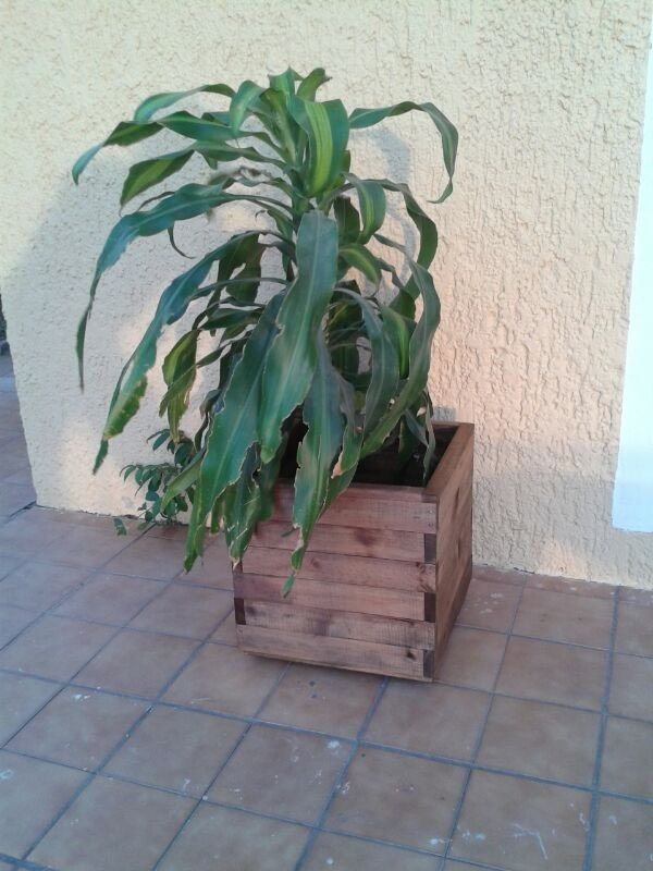 Maceta de madera en mercado libre - Macetas madera exterior ...