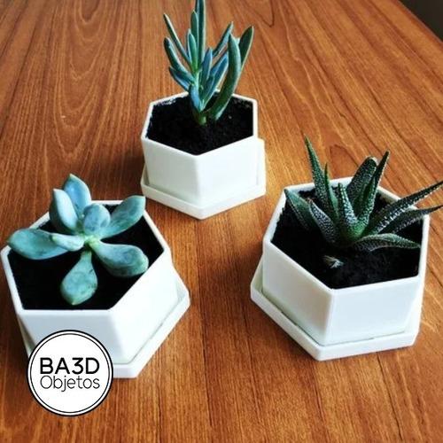 maceta hexagonal con plato suculenta cactus deco diseño