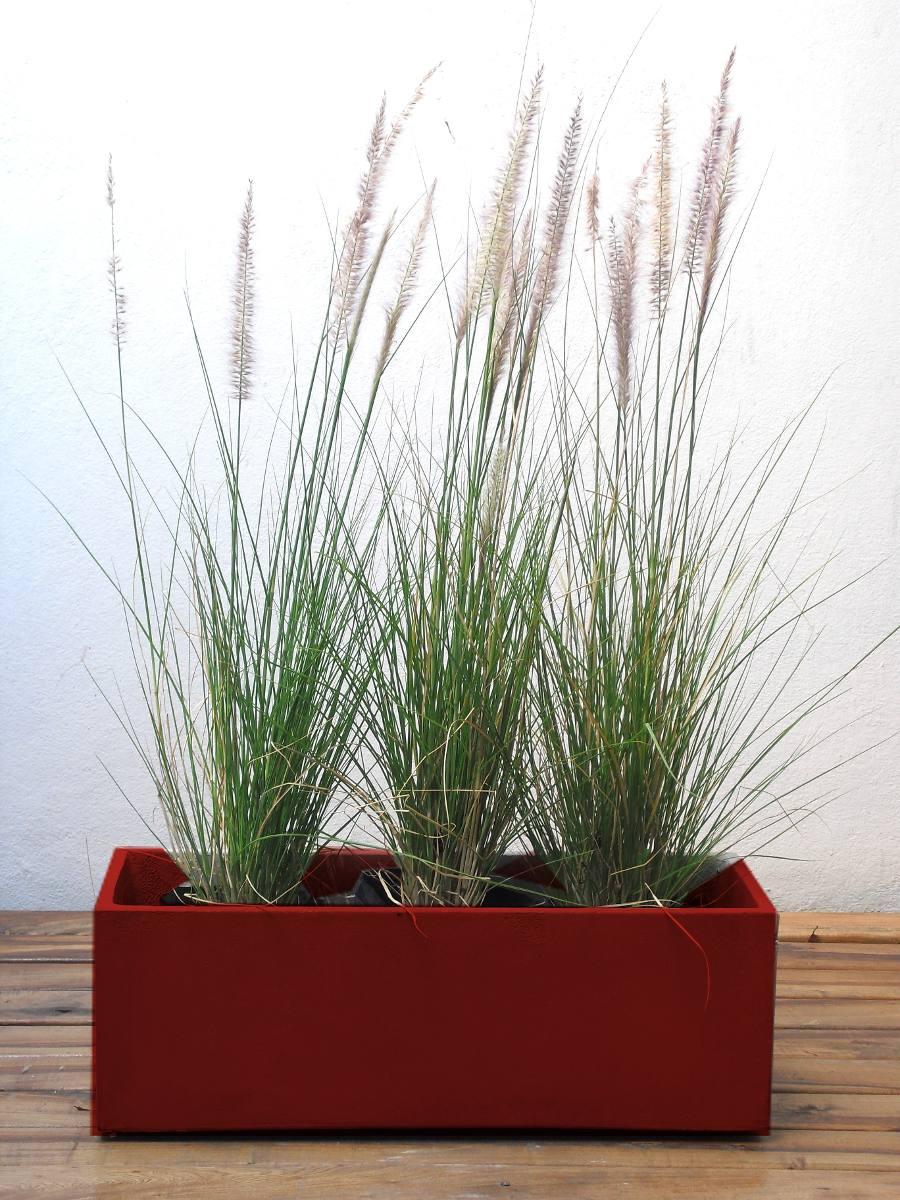 Maceta jardinera 80x20cm plantas para tu comercio for Plantas macetas exterior