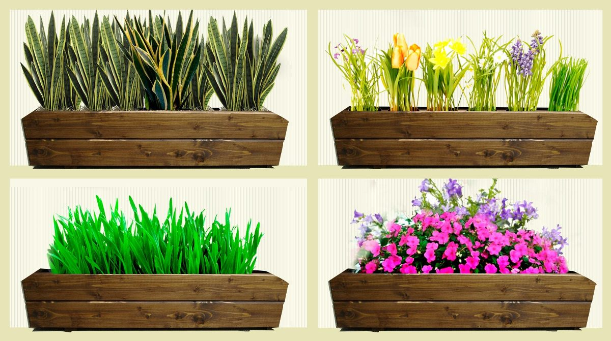 Lujo Jardineras Con Plantas Ornamento Ideas de Decoracin de