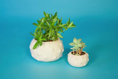 maceta porcelana blanca chica- tienda puro diseño