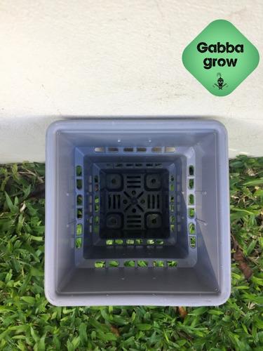 maceta roots house 10 litros indoor gabba grow olivos