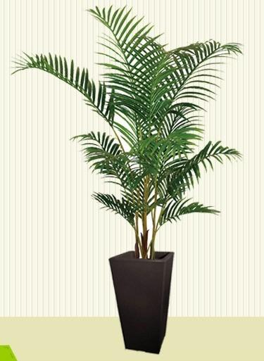 Maceta Rotomoldeada Con Plantas De Interior Y Exterior - $ 1.546,00 ...