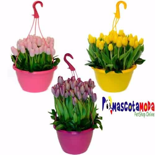 Macetas colgantes para plantas decorativas varios colores for 5 plantas decorativas