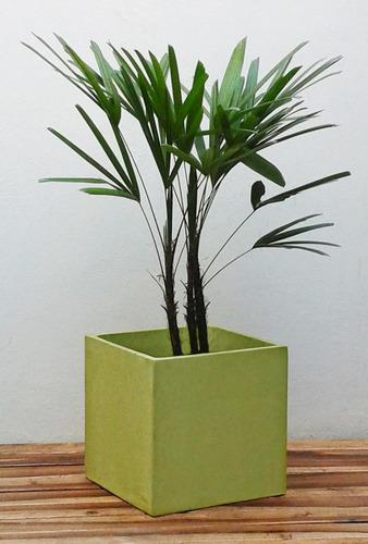 macetas con plantas modernas decoración - armá tu combo