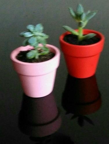 Macetas De Barro Pintadas Con Plantas Para Regalo O ...
