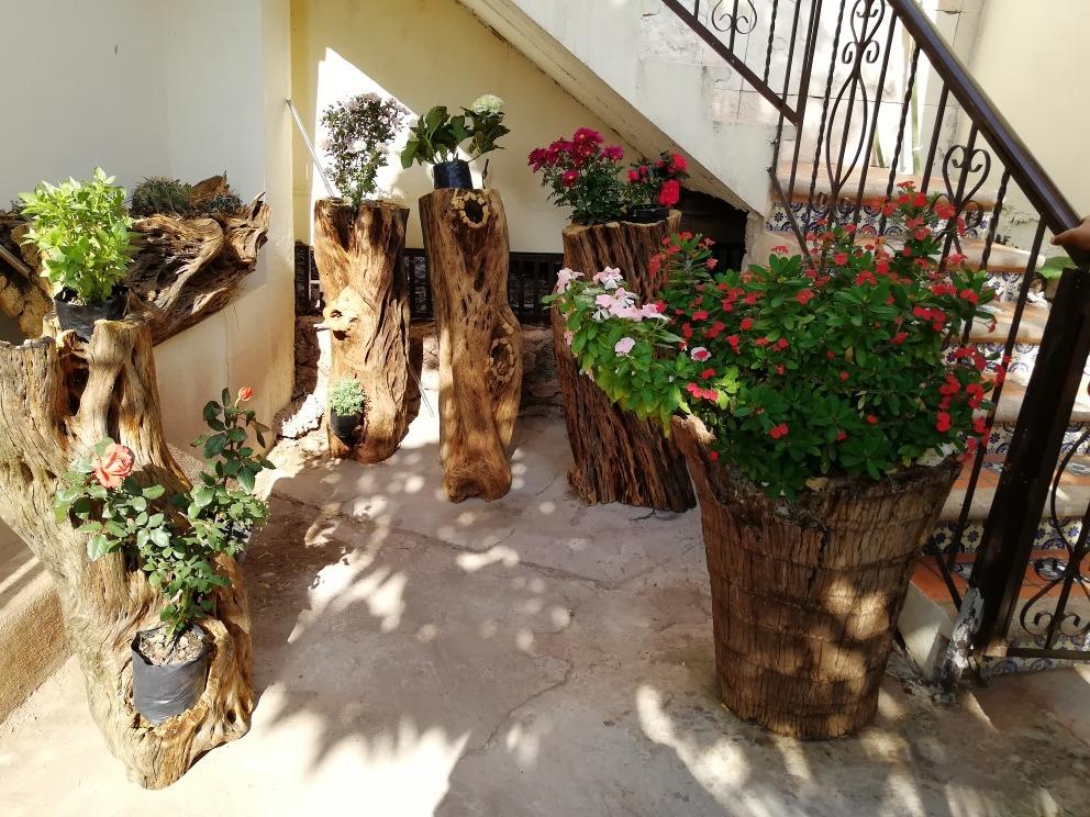 Macetas De Madera De Cactus Seco 110 Cm De Largo 200000 En - Cactus-seco