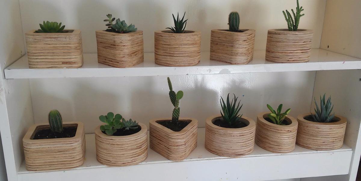 Macetas Madera Cactus, Souvenirs, Regalos - $ 225,00 en Mercado Libre