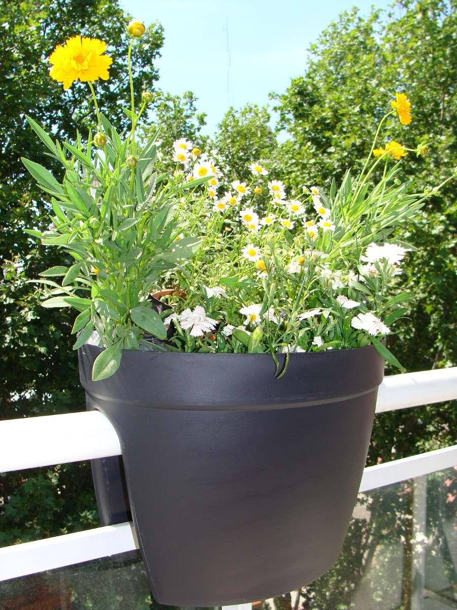 Maceteros para balcones decoracin de balcones con plantas - Maceteros colgantes para balcones ...