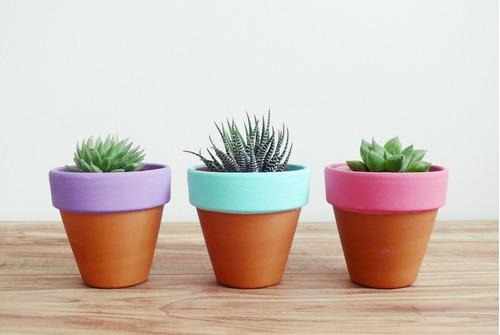 macetas pintadas a mano - souvenirs - cactus - regalo
