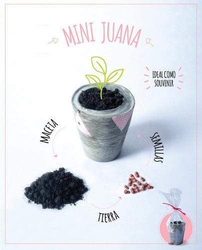 macetas souvenir, cemento + tierra + semillas.