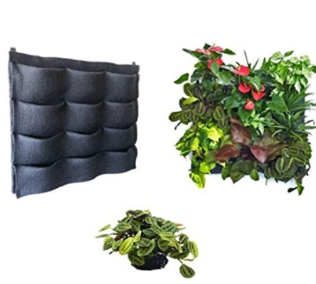 Macetas verticales muros verdes jard n vertical for Plantas para muros verdes verticales