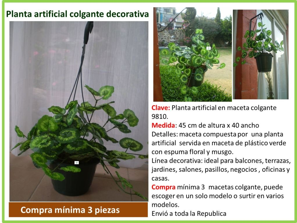 Macetas Y Plantas Para El Hogar 1 En Mercado Libre