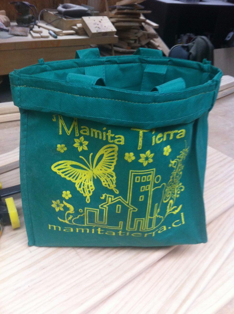 Mamita de verde en bus - 2 5