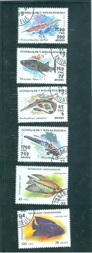madagascar 1990 s : fauna , vida marina , peces  ;