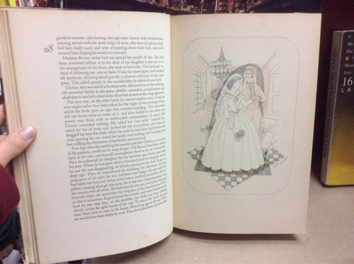 madame bovary. gustave flaubert. novela en inglés