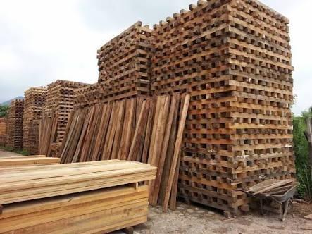 madera para cimbra