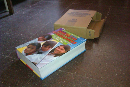 maestras, libro proyectos prontos primaria con cd