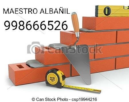 maestro albañil 998666526