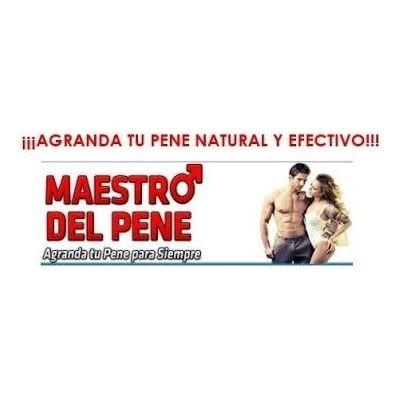 maestrodelpene pdf