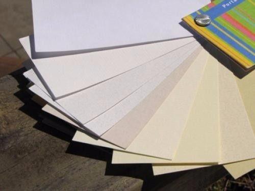 maestro en papel mural y terminaciones en general