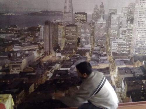 maestro instalación papel mural