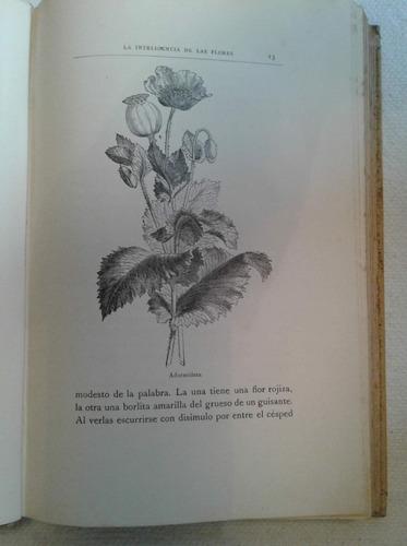 maeterlinck la inteligencia de las flores 1914 muy ilustrado