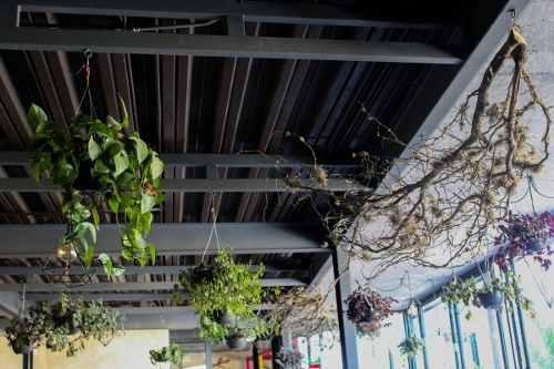 magnãfica oportunidad de traspaso de restaurante en lomas 3ra secc. en san luis potosã