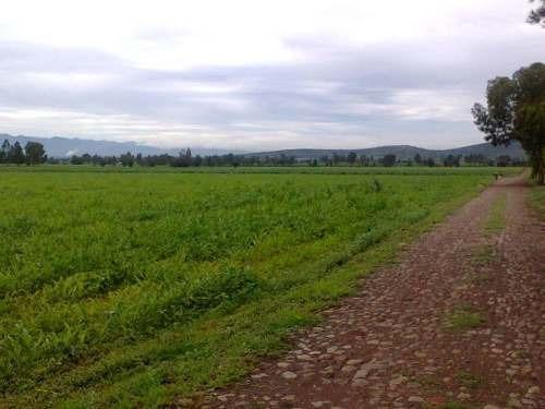 magnifico rancho agrícola de  240 has, san juan del rió, querétaro