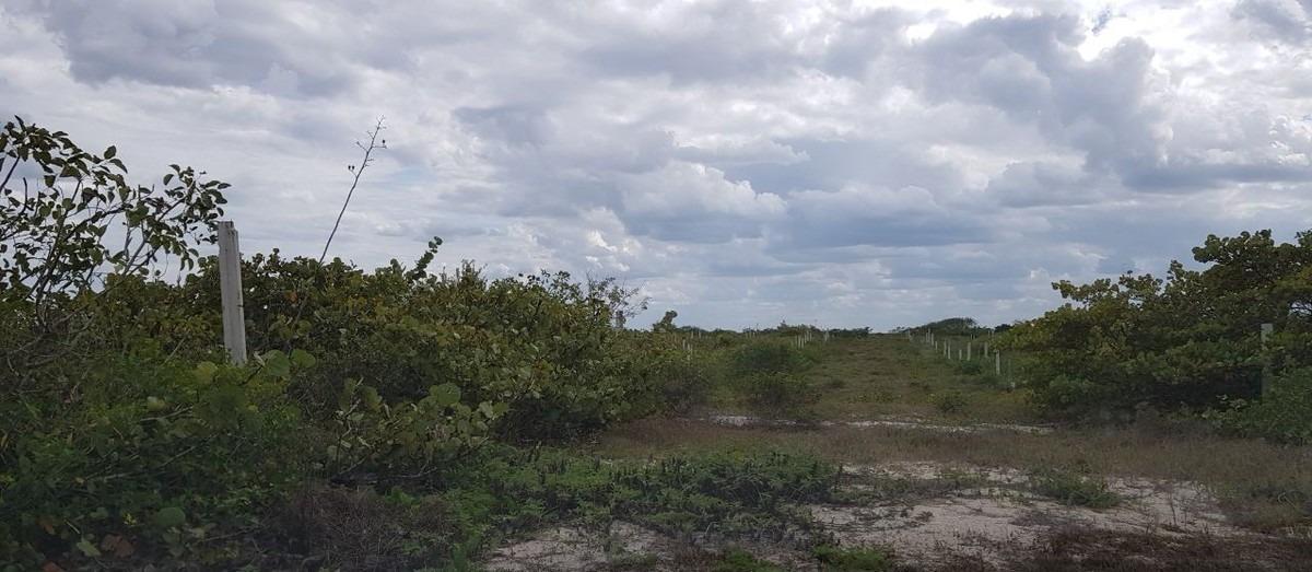 magnífico terreno en la playa de san benito m659