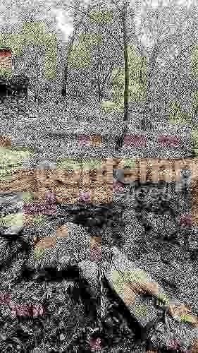 magnífico terreno en venta - condado de sayavedra