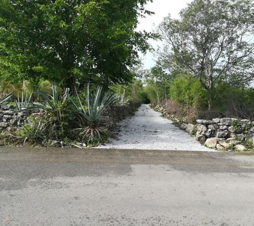 magnifico terreno por la carretera a sierra papacal