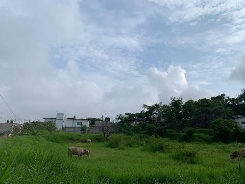 magnifico terreno uso de suelo comercial zona norte