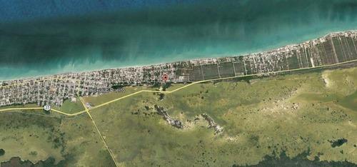 magníficos terrenos en chicxulub puerto en venta